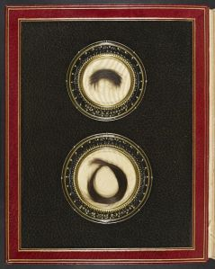 Hair of P. B. Shelley and Mary Shelley bound into a manuscript volume